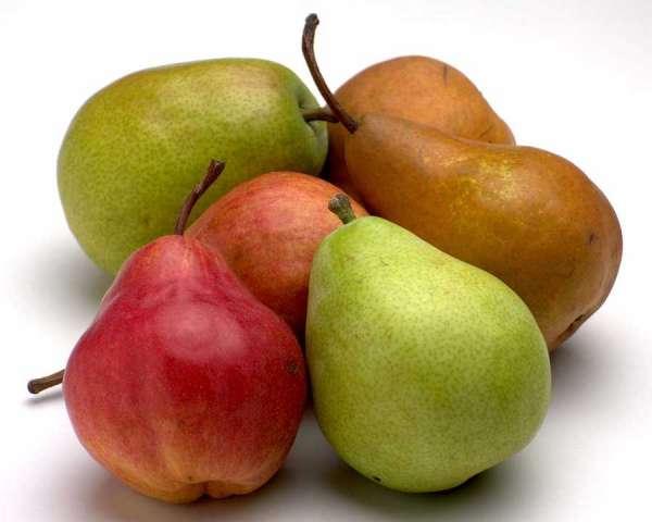 http://rogerfruitsetlegumes.free.fr/Poire.jpg